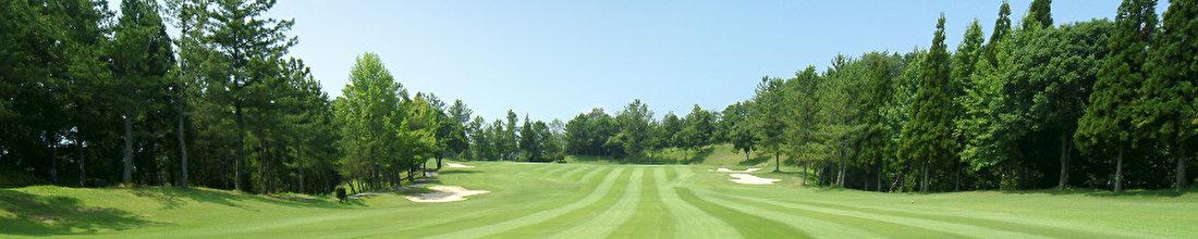 ゴルフスイングは最新ゴルフ理論で実践しましょう!